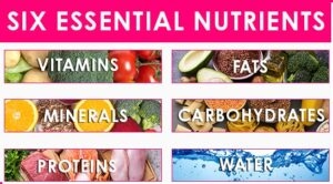 Daily Essential Nutrients